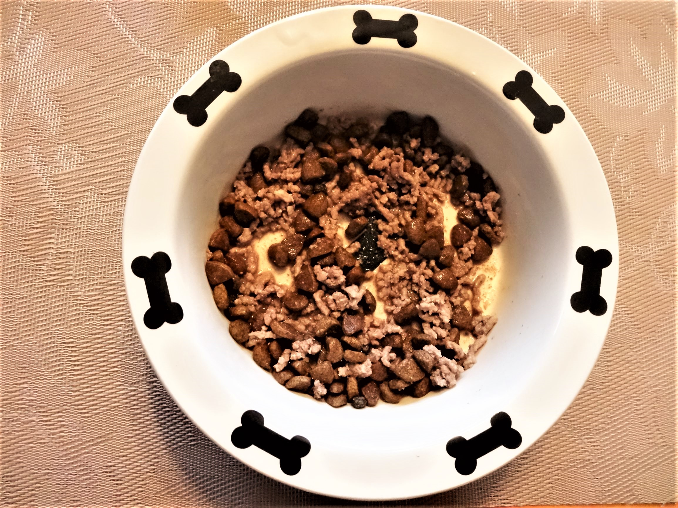 Healthy Dog Food and Supplements