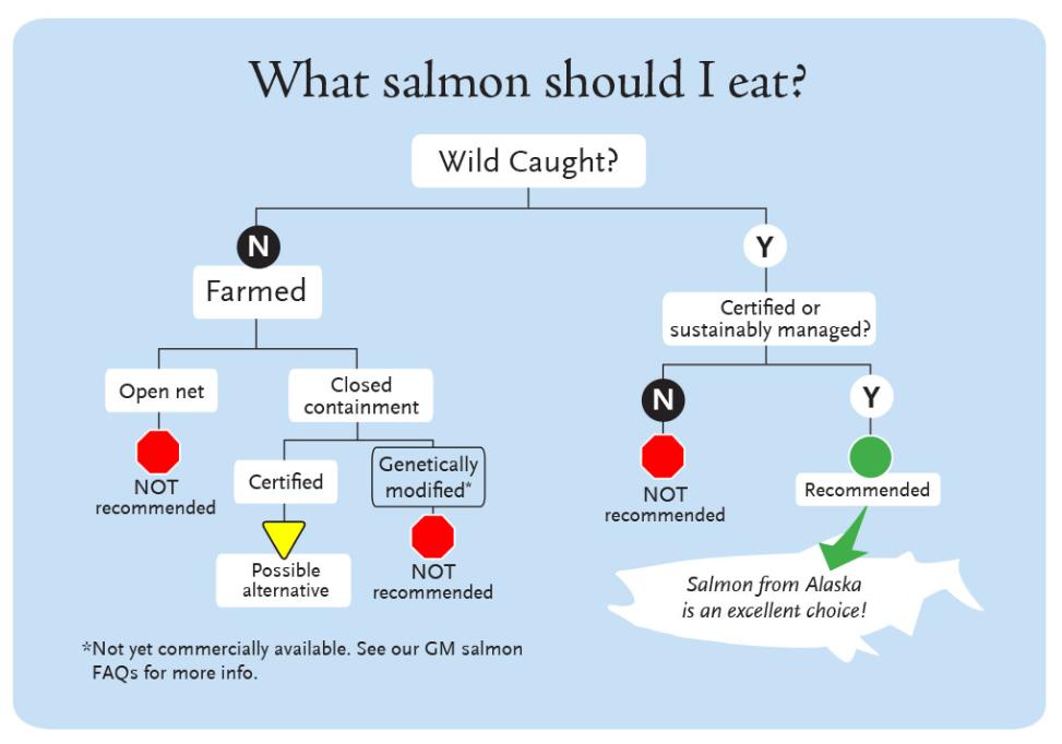 Becks Dill and Mustard Salmon