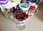 Sundae glass with yogurt, blueberries and raspberries