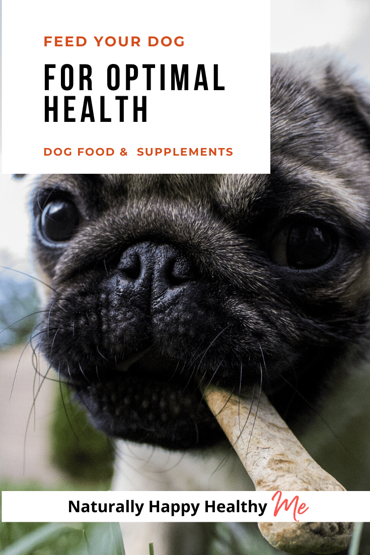 I eat healthy foods to maintain optimal health, and I want my pets to for the same reason. Here's how I feed my dogs a healthy dog food and supplements in a few minutes a day.