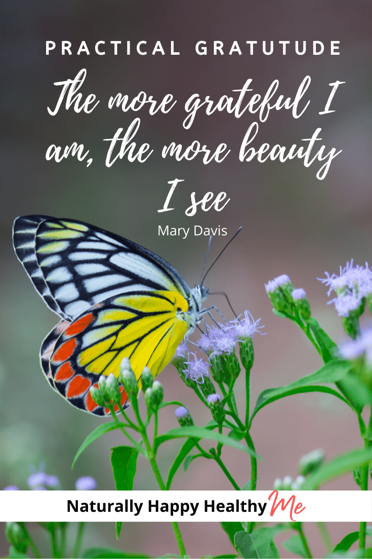 Gratitude is a powerful positive emotion you can be magnify to tremendously enrich your life. Learn how to magnify the power of gratitude to increase your own expression of gratitude and create more happiness for yourself and others.